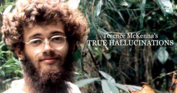Terence McKenna's True Hallucinations