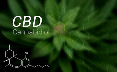 What is CBD (Cannabidiol) And What Does It Do?